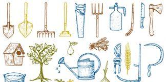 הכנת הגינה לחורף – המדריך המלא